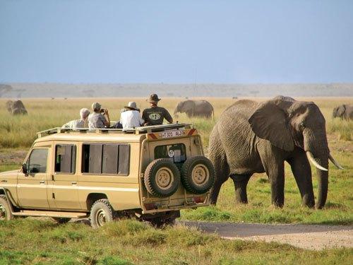 safari 4x4 - viaje a Kenia
