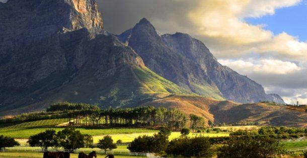 Excursión viñedos Ciudad del Cabo - viaje a Sudáfrica