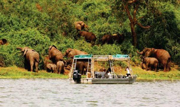 Safari en barco, queen elizabeth - viaje a Uganda en grupo