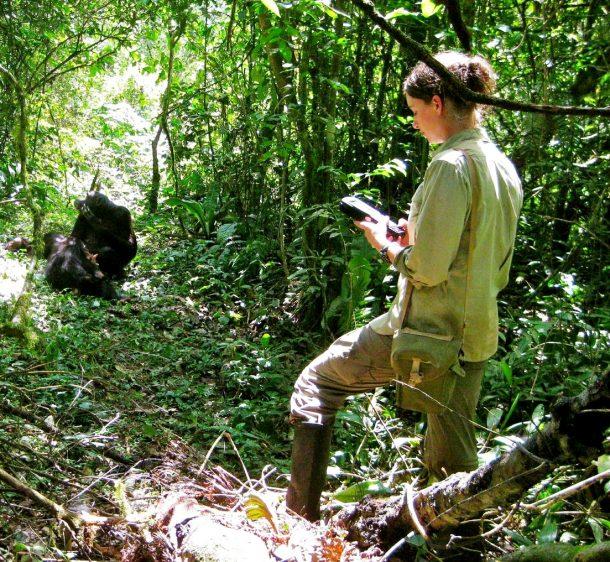 Chimpancés en Kibale - viaje a Uganda en grupo