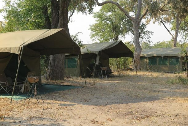 campamento Botswana, safari por Botswana