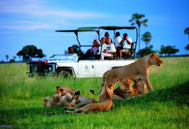 Safari en Moremi - safaris y viajes a Botsuana