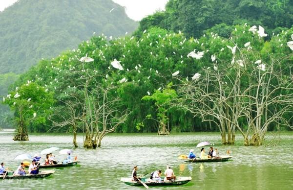 Reserva aves Thung Nham-Vietnam aventurero
