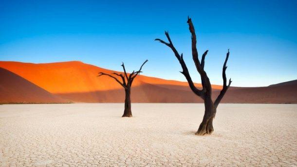 Dead Vlei - viaje a Namibia