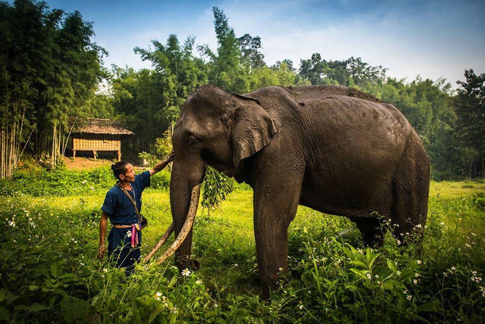 Eco Valley Sanctuary-Circuito Norte a Sur de Tailandia