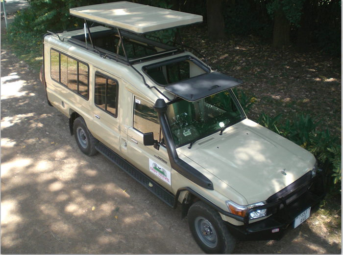 Land Cruiser de safari