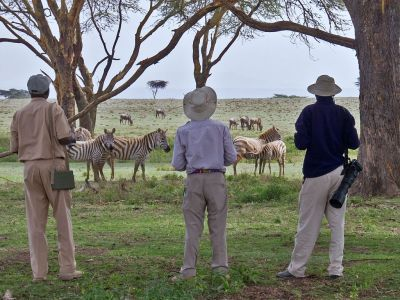 Viaje a media a Kenia - Crescent island