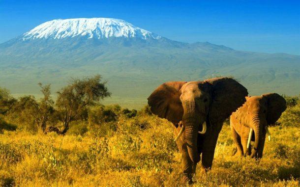 Amboseli - Viaje a medida a Kenia
