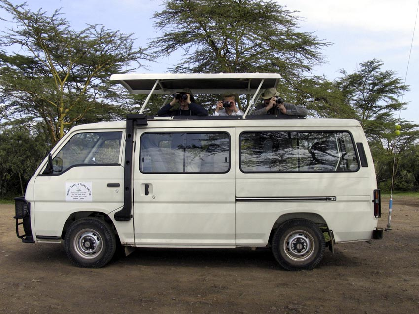 Minibús de safari